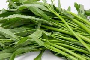 空心菜的功效作用有哪些?