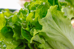 蔬菜一顿吃不完怎么办?
