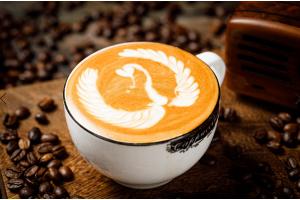 成都王森24天国际SCA咖啡综合班