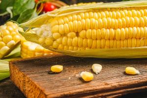 脆皮玉米做法培训