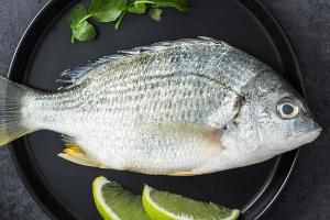 合肥鲷鱼烧课程培训