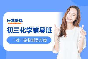 杭州乐学初三化学辅导班