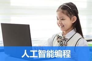 长沙童程童美人工智能编程培训班