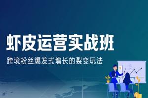 深圳汇学Shopee运营实战班