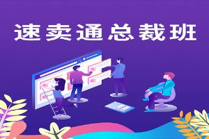 深圳美迪速卖通总裁培训班