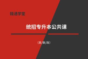 唐山专升本(英/数/政)公共课辅导班